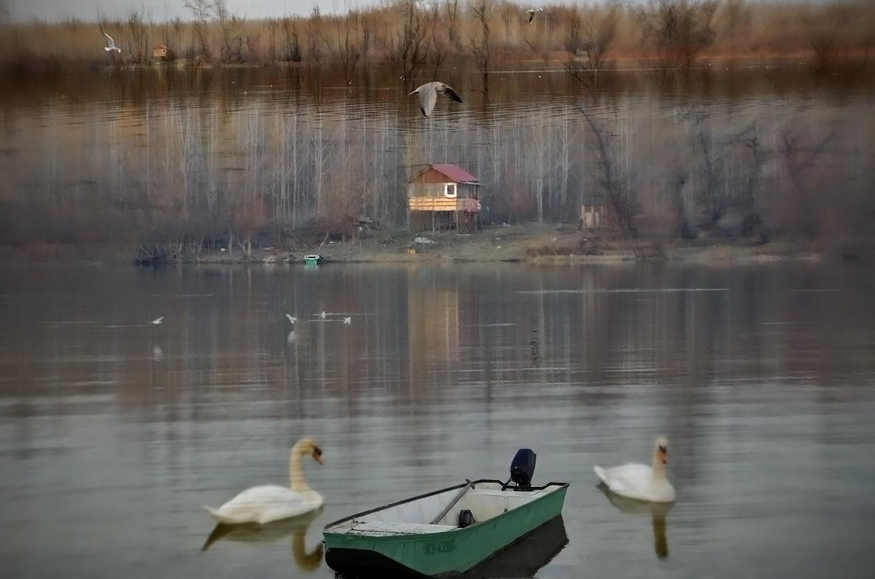 Maštarenja usamljenog čamca