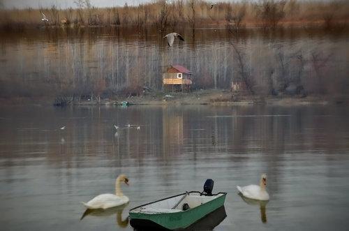 TheLadyD Maštarenja usamljenog čamca