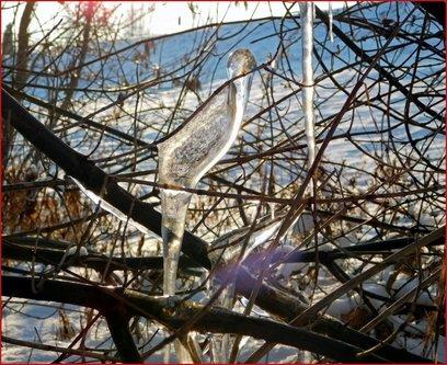 TheLadyD Ptica na grani