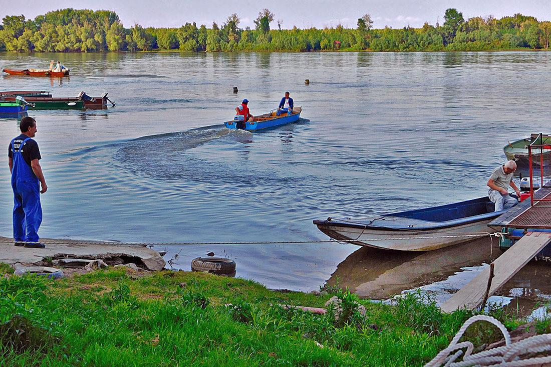 Život na Dunavu