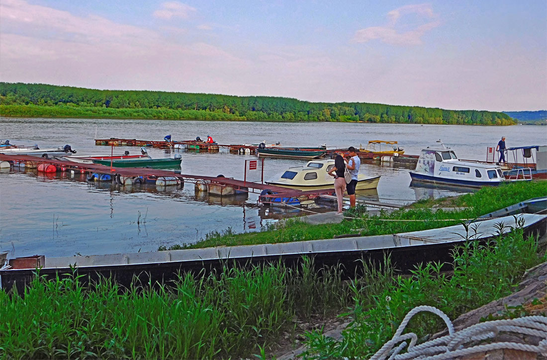 Život na Dunavu teče