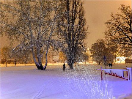 TheLadyD Snežna mećava