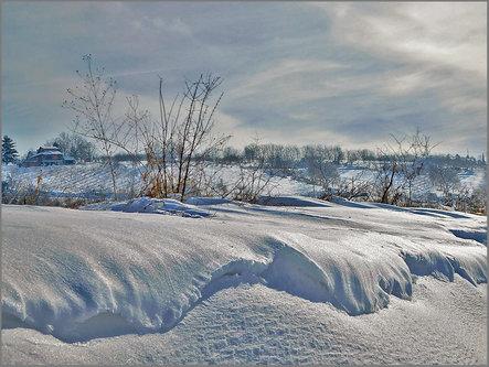 TheLadyD Snežni talasi (Panonsko more )