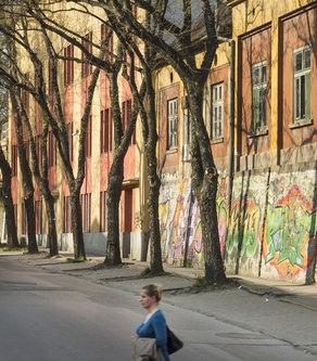 Tijanaa Šarena ulica