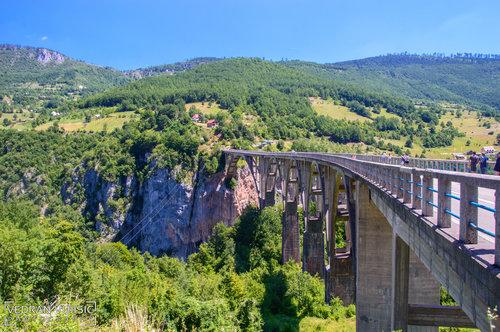 VedranMNE Most na Đurđevića Tari