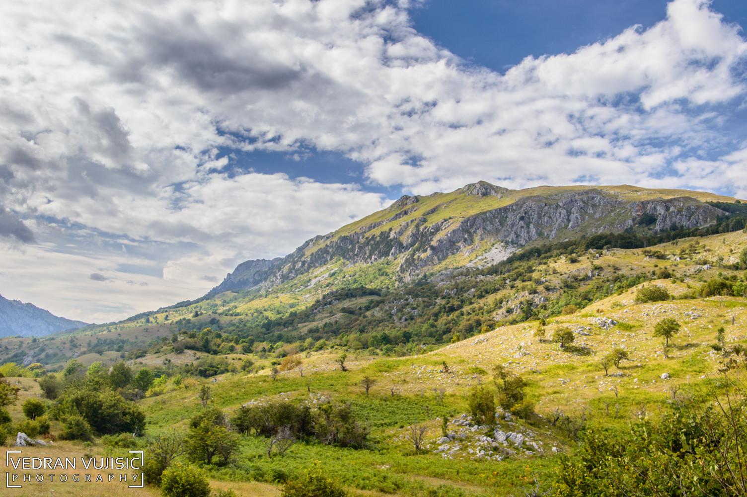 Ljetnji pejzaž Crna Gora