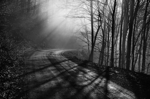 VladimirMijailovic The shadows and rays