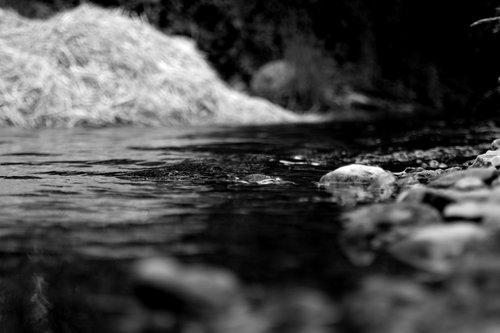 VuckoBre Creek