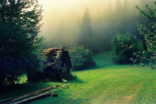 Winwood Podizanje jutarnje magle