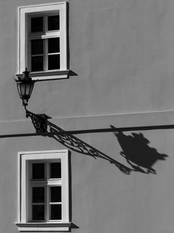 amiskov shadow