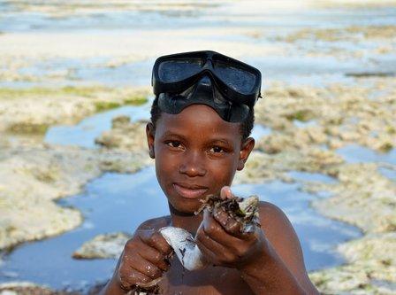 amy15 Mali ribar