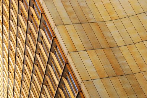anaumceski golden lines