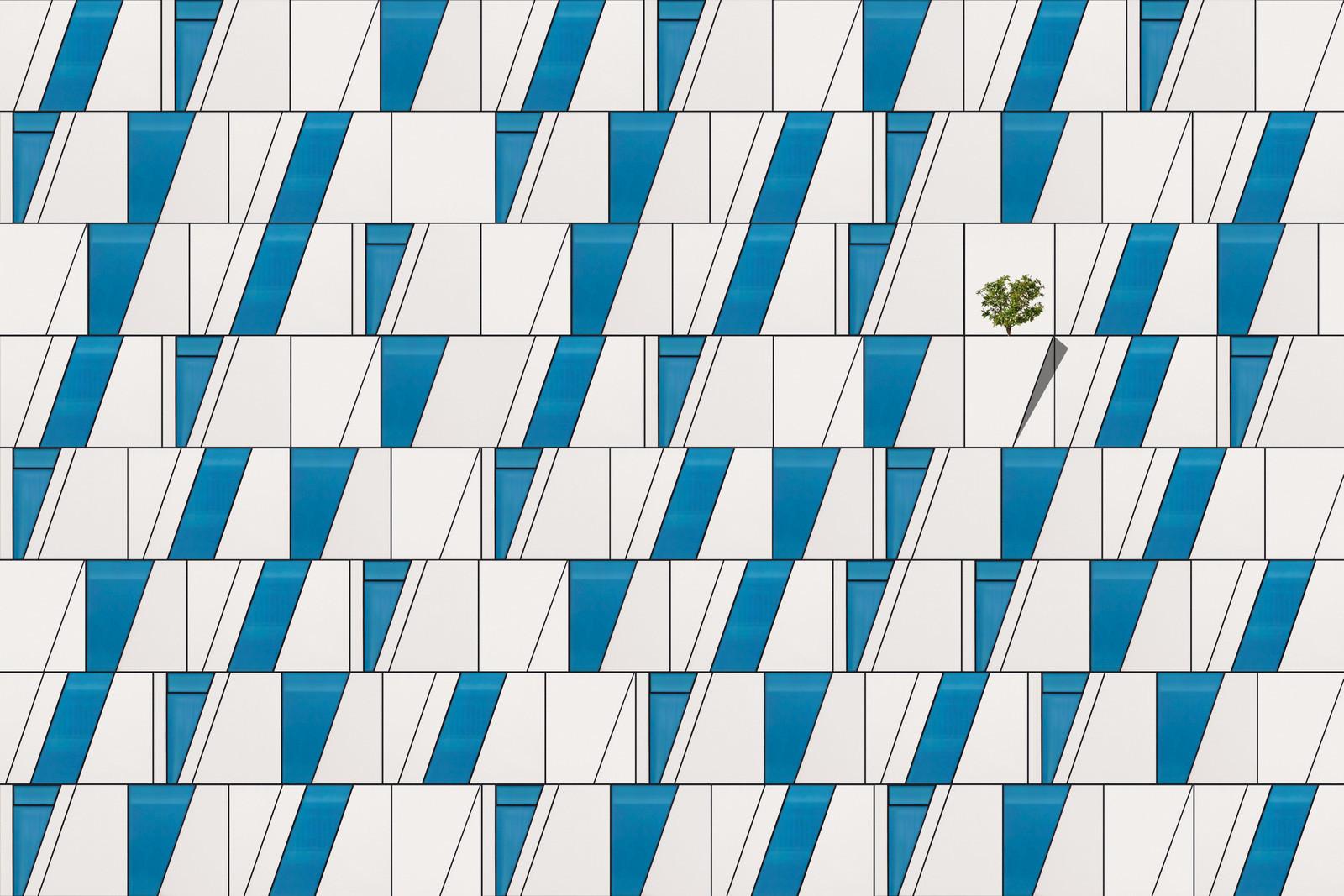 life on facade