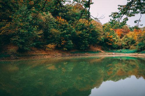 andjela908 Jesenje boje