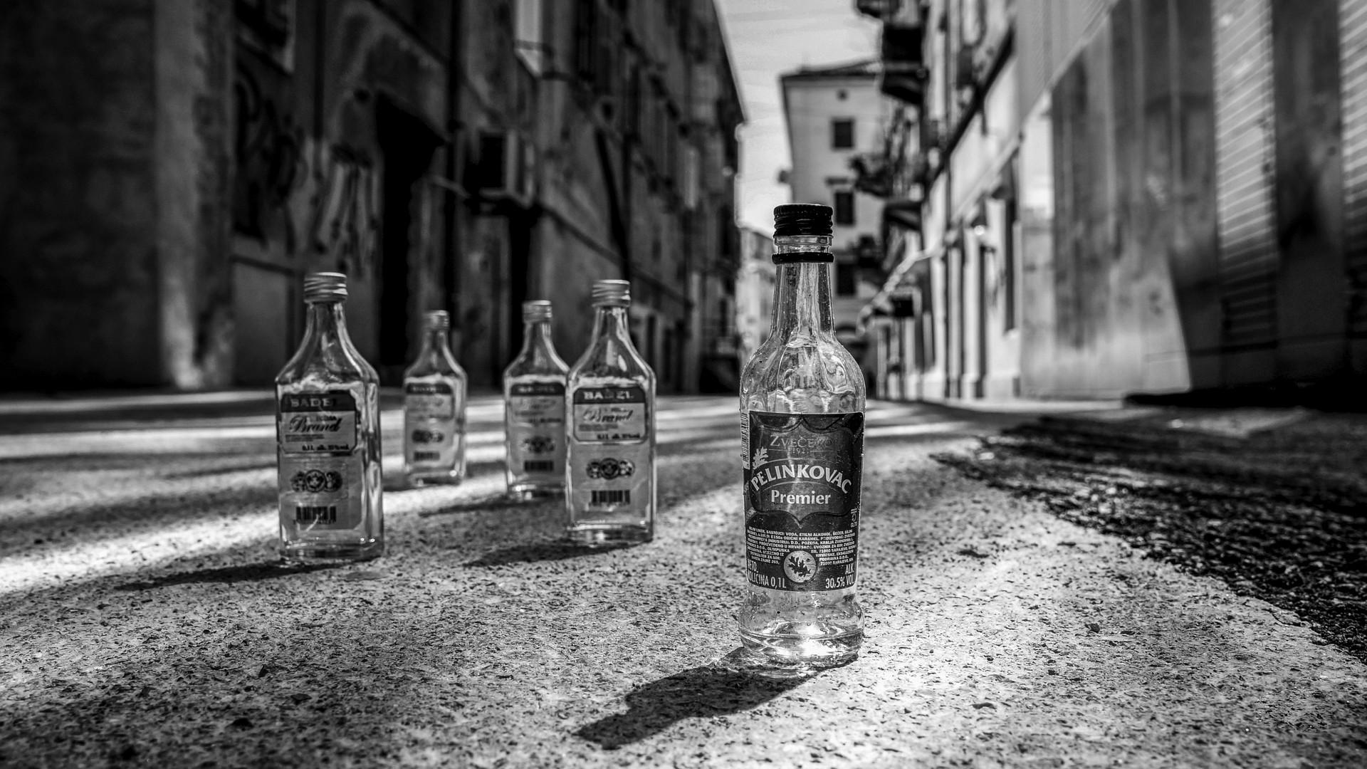 ulica pjesnika