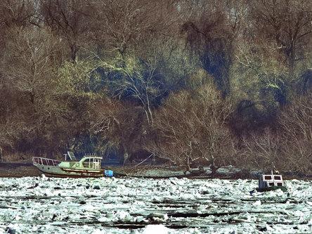 bebaja Led na Dunavu