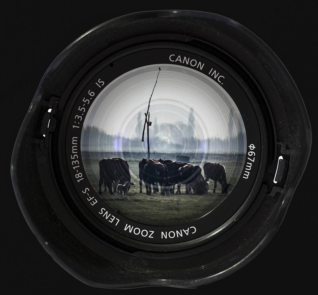 Canon,