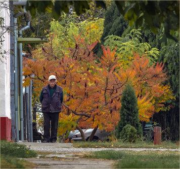 beodra Jesen... i jesen života...