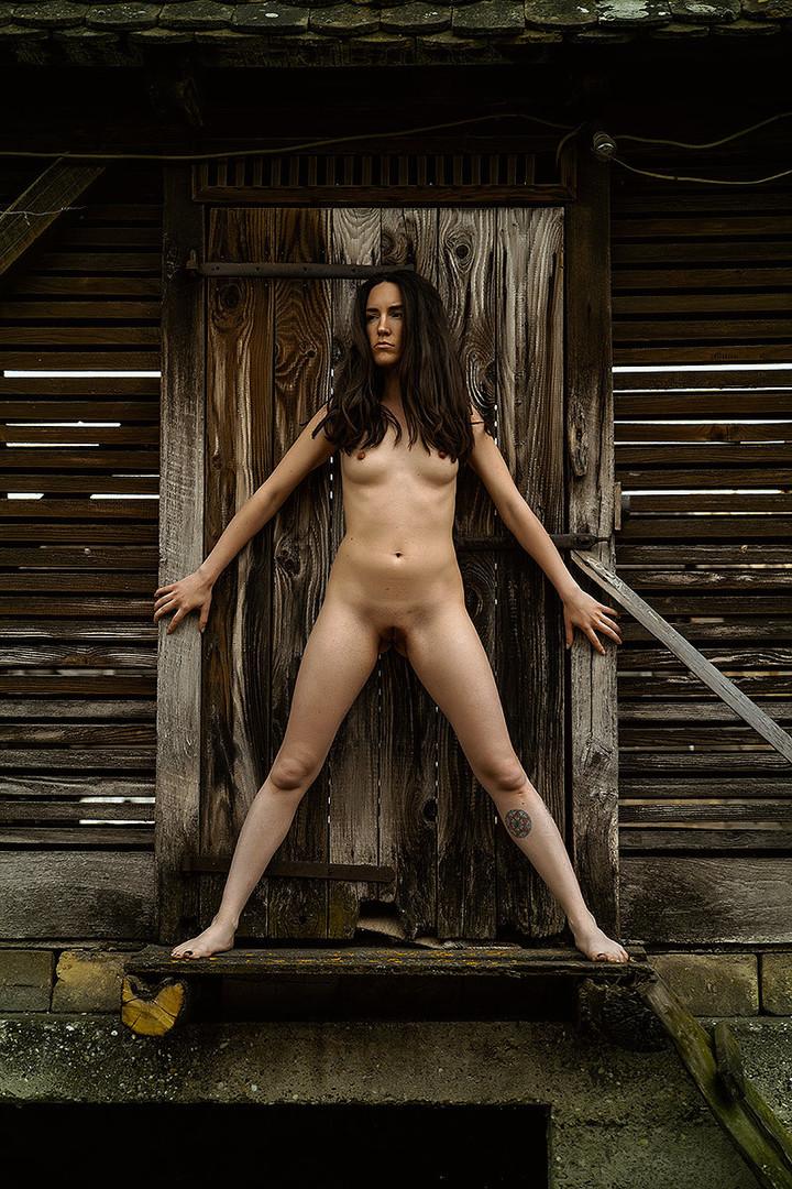 Čuvarica ulaza