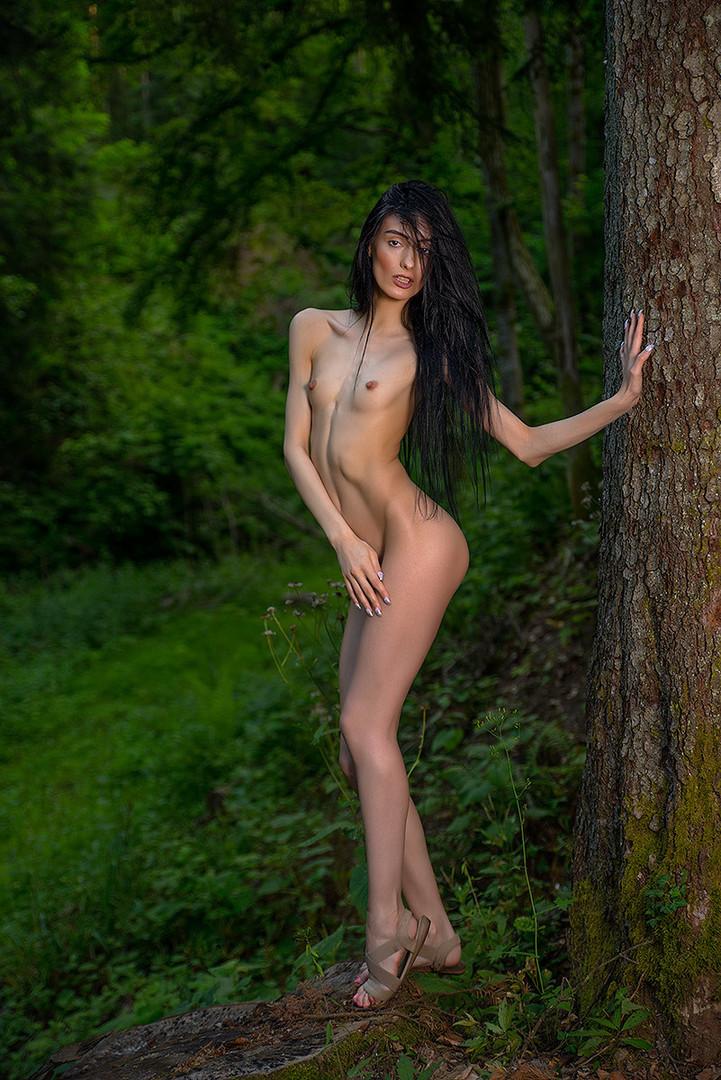 Crnokosa iz crne šume