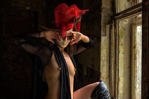 blackbird Maska pored prozora