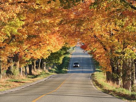 blamir Jesenja razglednica