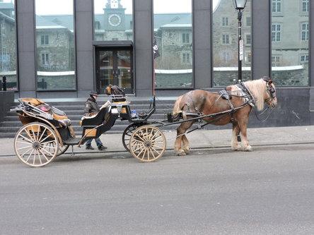 blamir Montreal stari grad