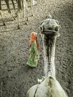 branco987 Devojcica u pustinji