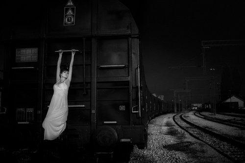 budjoni train