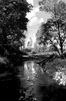 bvelickovic Boračka reka