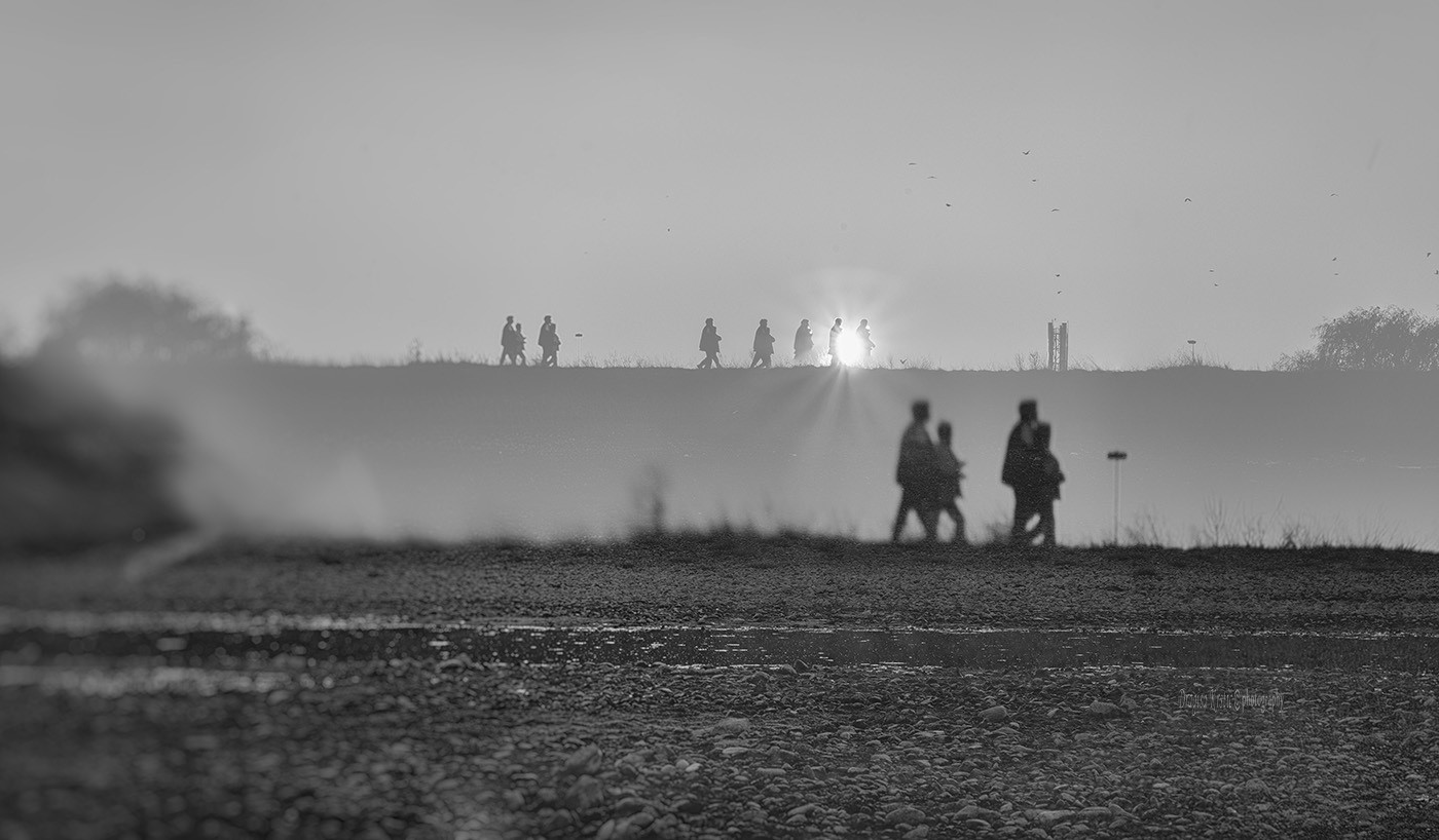 Smokey walkers