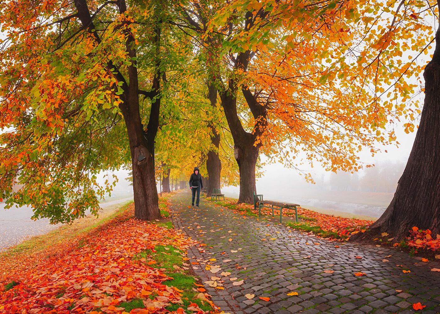 Eksplozija jeseni