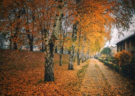 bygilles Putem jeseni...