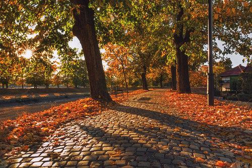"bygilles ""Jesenja staza """