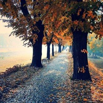 bygilles jesenja setnja