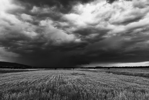 coa75 Before the Storm