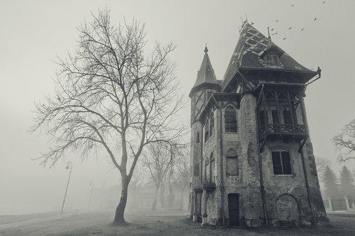 darezare Spooky house