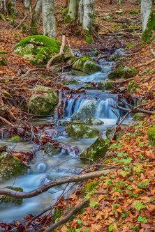 dejod Šumski potok