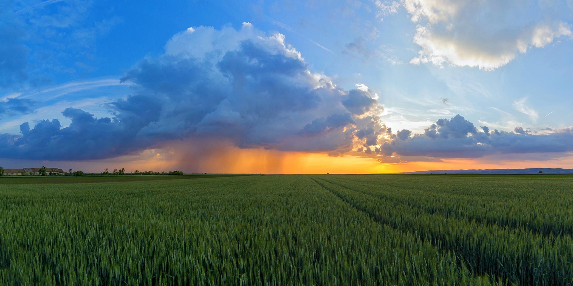 Rain and sunset