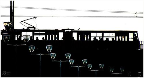 dragan tramvaj zvani želja