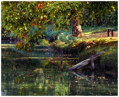 dragan jesen