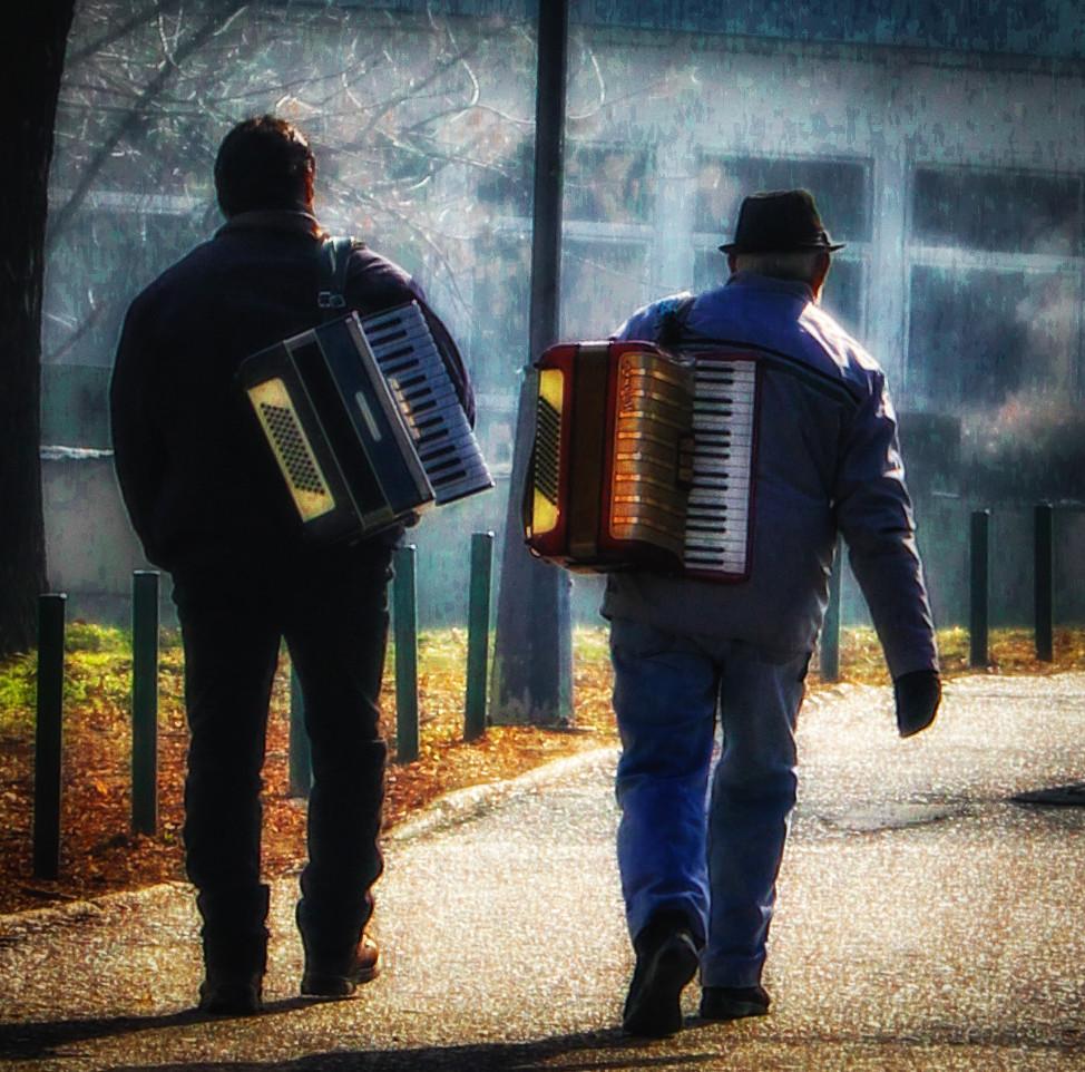 muzikanti avanti