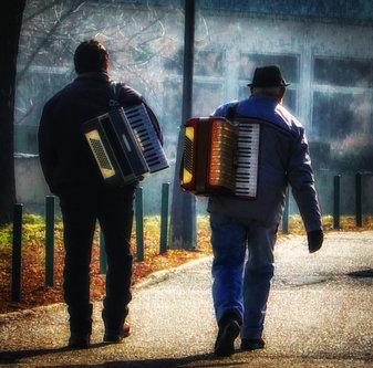 dragan muzikanti avanti