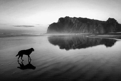 dragannz Beach walk...