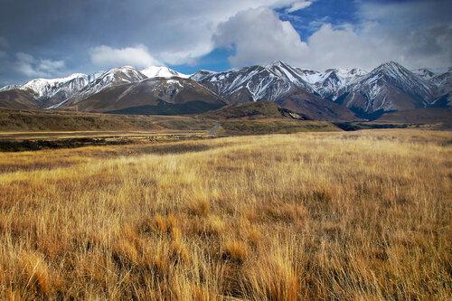 dragannz Juzni Alpi, Novi Zeland