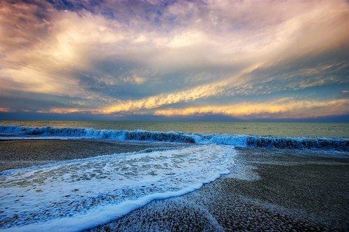 dragannz Napier Beach