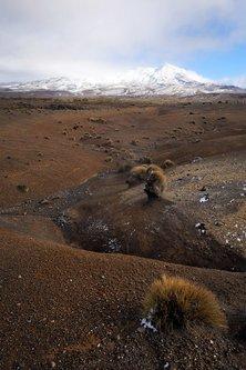 dragannz Pod vulkanom