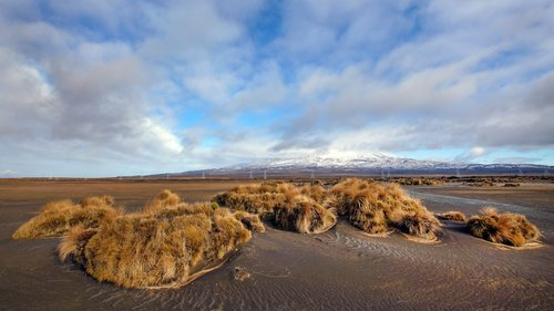 dragannz Rangipo Desert