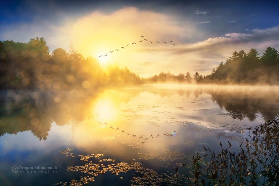 U ranu zoru...