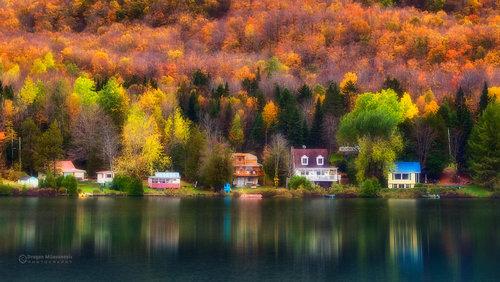 dramil Zlatna jesen